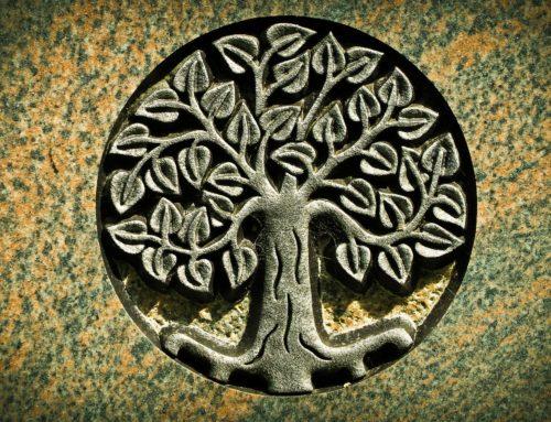 Symboles et Ondes de forme